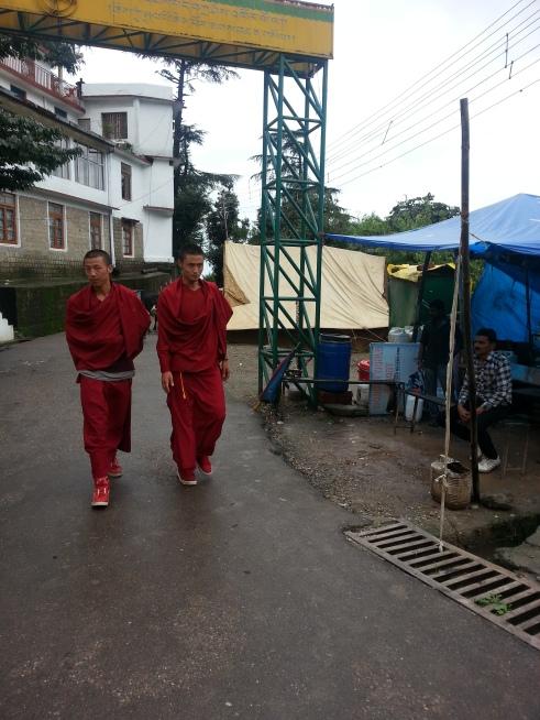 Monks in maroon