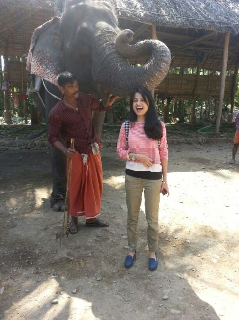 Padma the elephant